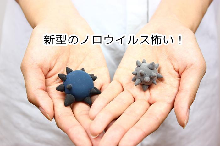 2015年に流行!新型ノロウイルス「GII.17」の特徴と予防方法!