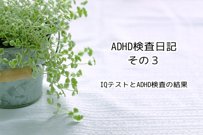 ADHDのIQテストとADHDの診断。特別支援学級に入れる?入れない?