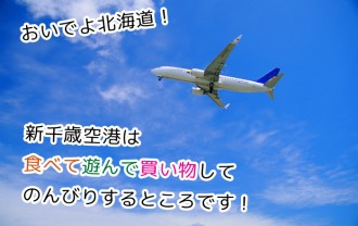 日本一楽しい空港!?子連れで行く新千歳空港の魅力と遊び場